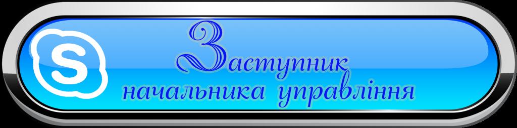 Скайп Зам1