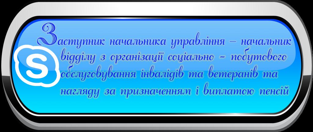 Скайп Зам2